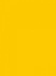 U114 ST9 - Žuta