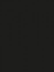 0080 SG-SF - Crna sjaj