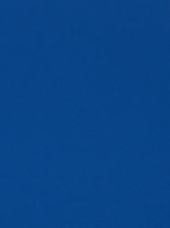 125 BS Kraljevsko Plava