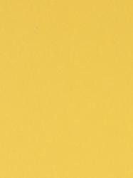 134 PE Cink Žuta
