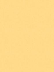 307 FS15 - PASTELNO ŽUTA