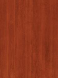 458 FS24 - Antička Trešnja