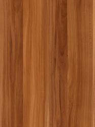 550 FS15 - Šljiva