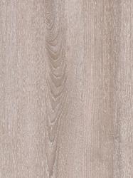 570 FS31 - Južni Jasen