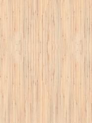 610 FS21 - Bambus